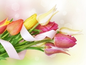 tulips, ribbon, bouquet
