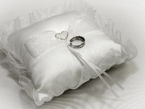 rings, Silver, Pillow, Heart teddybear