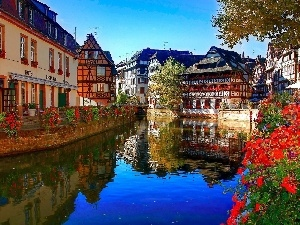 River, Restaurant, Town, Flowers, Hotel hall