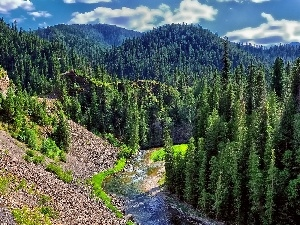 woods, River, Mountains
