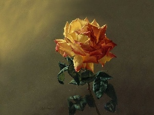 painting, rose, picture