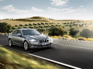 Way, route, BMW 5 Series F10, View