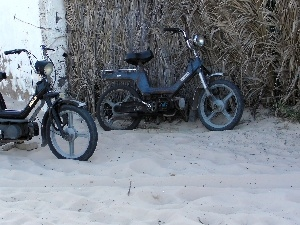 Scooter, Tunisian