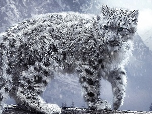 snow, Panther, snow leopard