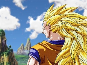 Son Goku, Dragon Ball Z