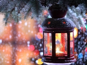 spruce, lantern, ornamentation, Christmas