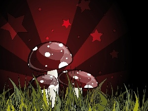 toadstools, Stars, Three