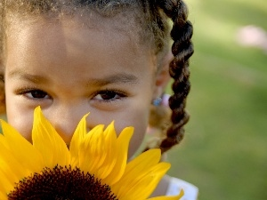 pigtail, Sunflower, girl