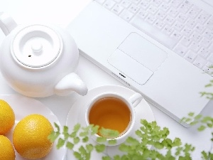 Amaranth, tea, keyboard