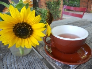 cup, tea, Sunflower