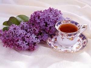 tea, cup, Violet, without