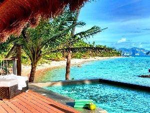 terrace, Pool, sea, Palm, Beaches