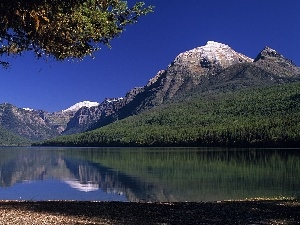 trees, coast, Mountains, lake
