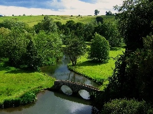 trees, bridge, field, viewes, River