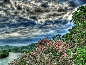 trees, clouds, River, viewes, storm