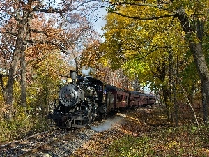 trees, Wagons, track, locomotive, viewes, steam