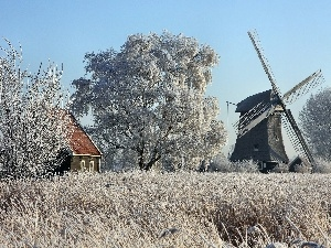 trees, grass, Windmill, viewes, frosted