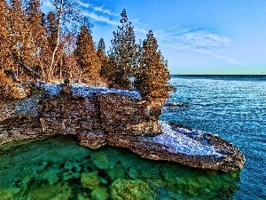 trees, rocks, winter, viewes, sea