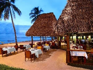 tropic, Ocean, Restaurant, Beaches