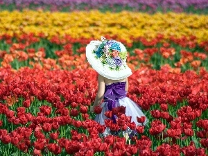 tulips, Field, girl, hat