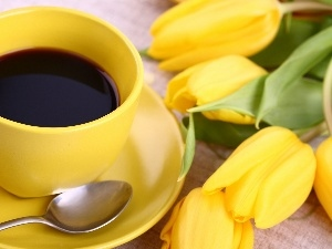Tulips, coffee, Yellow Honda, cup