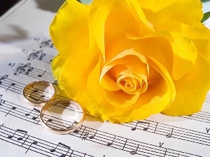Tunes, rings, Yellow, roses