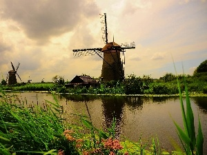River, VEGETATION, Windmills