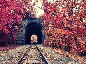 autumn, viewes, trees, tunnel, Leaf, ##, railway