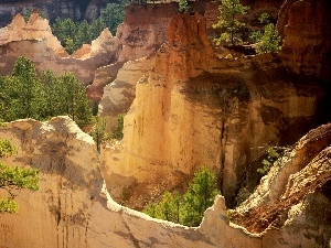 viewes, trees, canyon, rocks