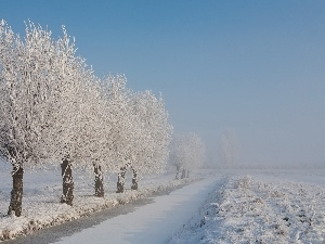 viewes, frosty, trees, Frozen, Field, River