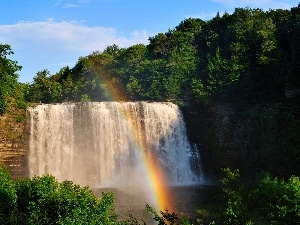 viewes, trees, waterfall, forest, Great Rainbows