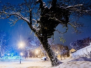 viewes, fountain, trees, Park, lanterns, winter