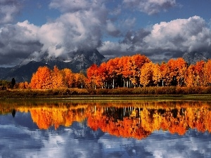 reflection, viewes, trees, Mountains, lake, clouds, color