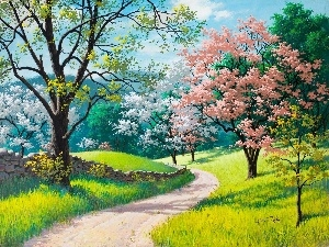 viewes, trees, Way, Spring, flourishing