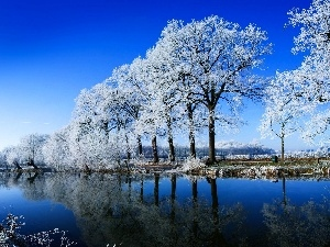 viewes, trees, winter, lake