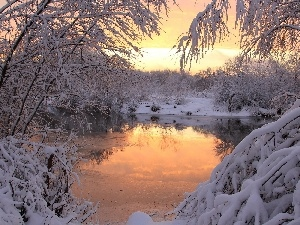 viewes, trees, winter, River