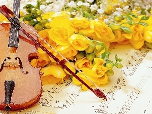 violin, Tunes, Yellow, roses