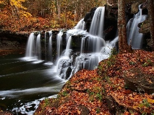 forest, waterfall, autumn