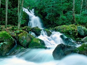 waterfall, mosses, forest, boulders