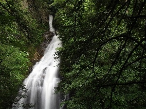 waterfall, green, trees, viewes