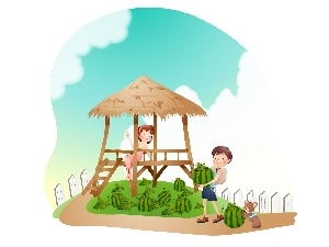 plantation, watermelons, Kids