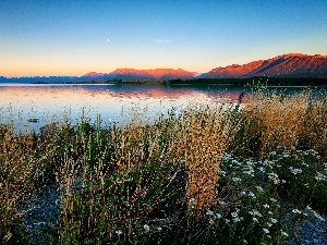 west, grass, Flowers, River, sun, Mountains