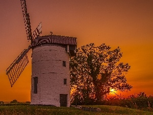 west, viewes, Windmill, sun, trees
