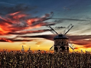 Windmill, field, west, sun