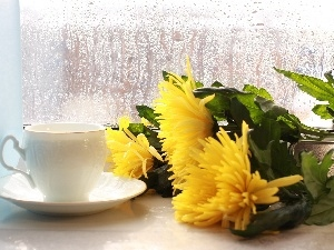 Window, bouquet, flowers, cup, Rain, tea