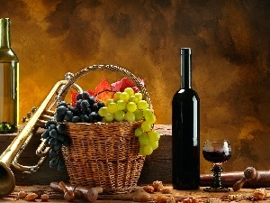 Wine, trumpet, basket, grapes