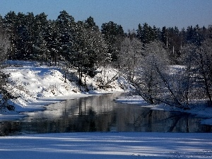 forest, winter, River
