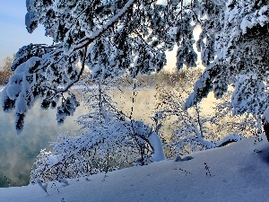 winter, viewes, River, trees