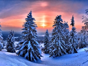 winter, Great Sunsets, Christmas