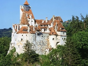 woods, Castle, Romania, Bran